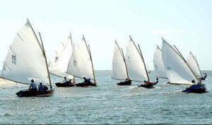 cotuit-skiffs-racing