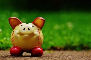 Tan piggy bank on a stone path with grass in the background