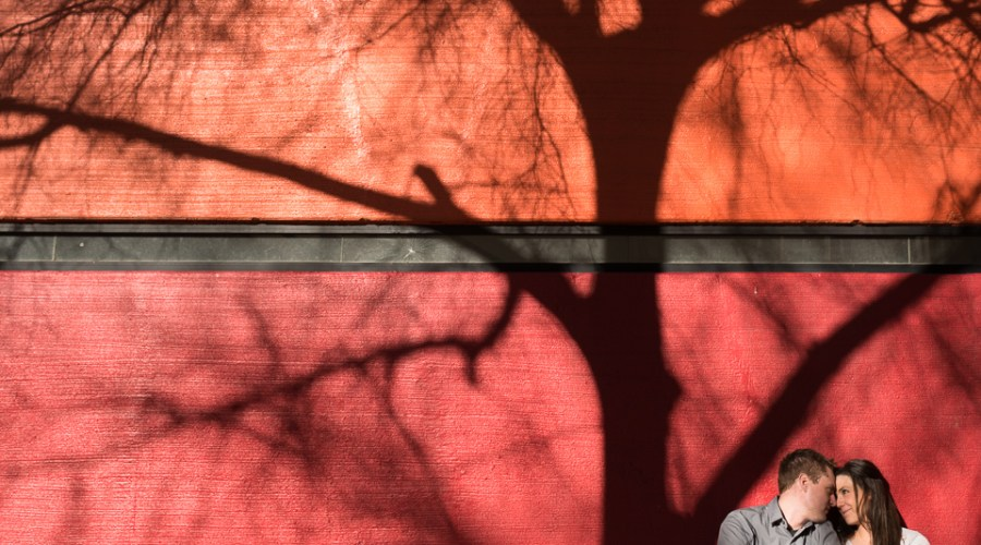 tree shadow red wall engagement denver