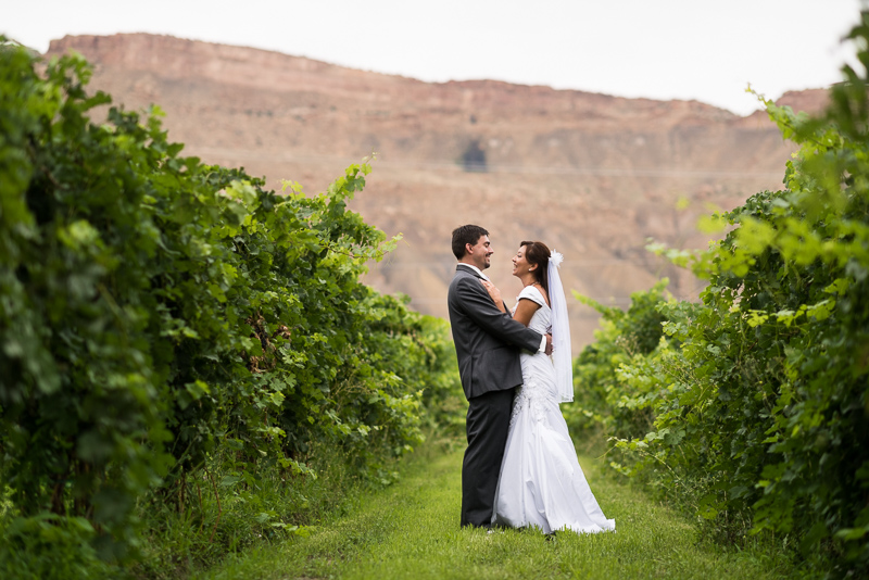 Palisade Wedding Photography vineyard