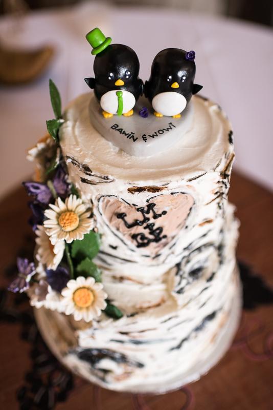 Palisade Wedding Photography aspen cake