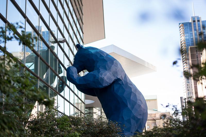 Denver Wedding Photography History Colorado big blue bear