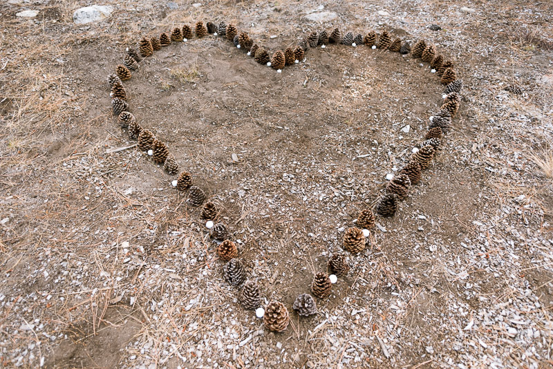 Lake Tahoe Wedding Photographer pinecone heart