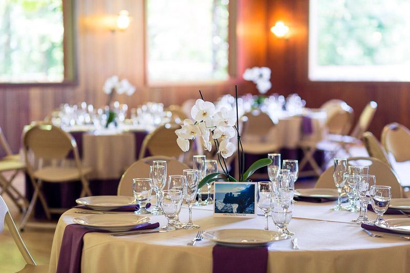 San Francisco Wedding Photography Villa Chanticleer reception decor