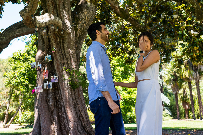 Sonoma Vineyard Proposal Photography Chateau St Jean laughing couple