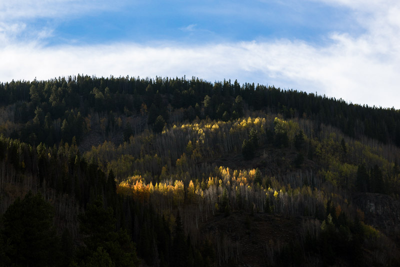 Vail Wedding Photography Camp Hale fall colors