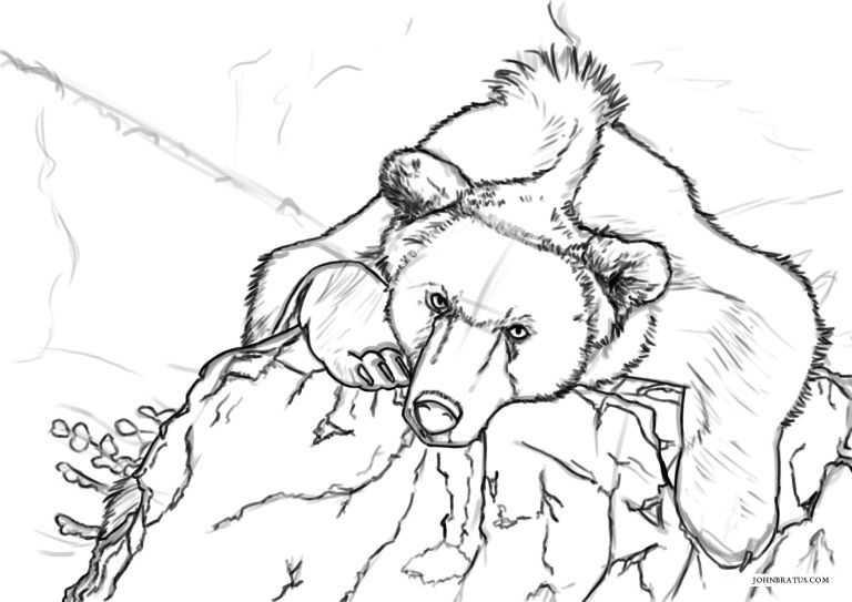 Digital sketch of a forest bear resting atop a rock