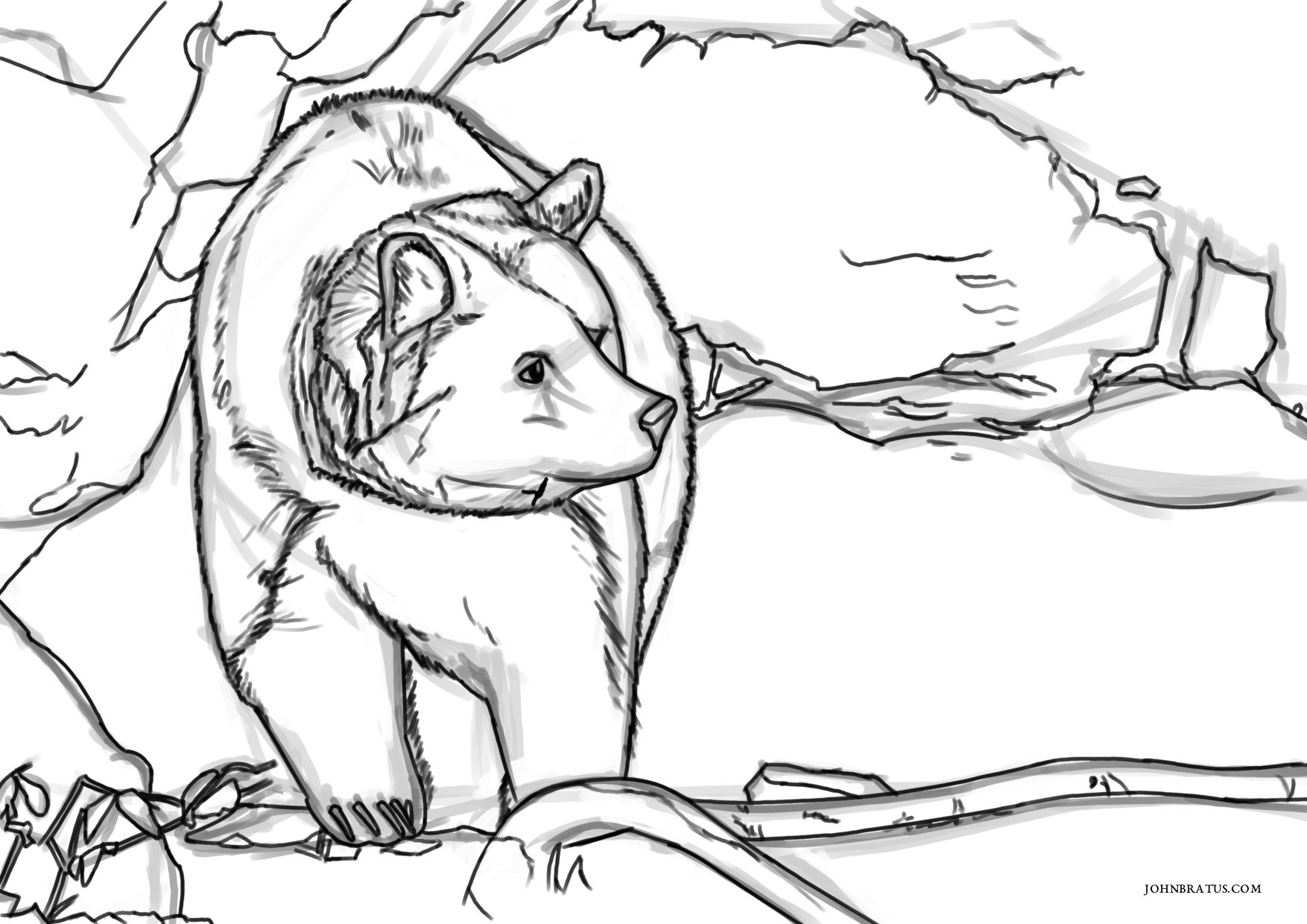 Digital sketch of a brown bear roaming outside his cave