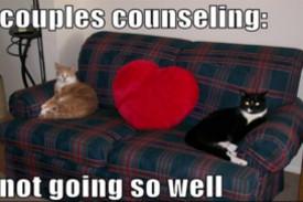 Professional Relationship Coaching