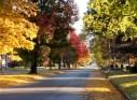 Paducah's Jefferson Street in Fall