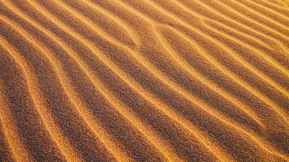 Image of sand from a dune at sunset