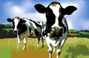 t3hr00tb33r_cows