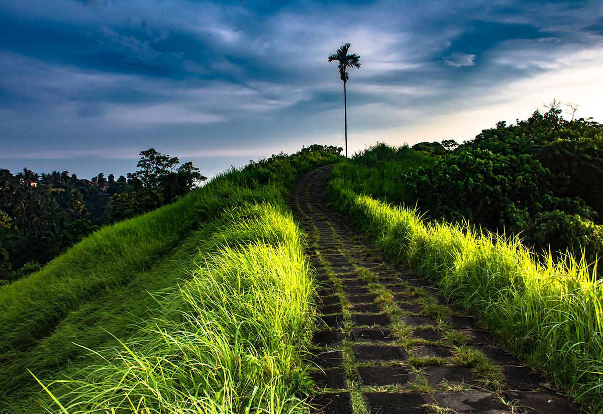 Bali Photography - Photo Book