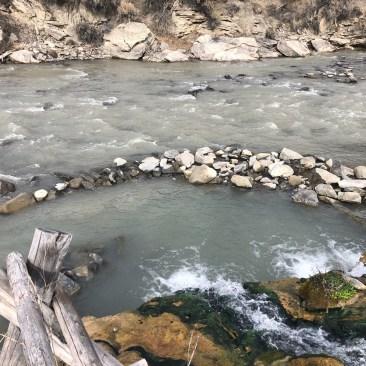 YellowstoneA
