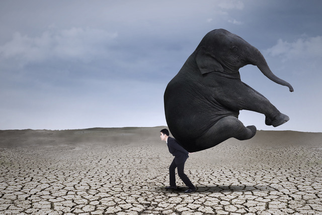 man-carrying-elephant-on-his-back