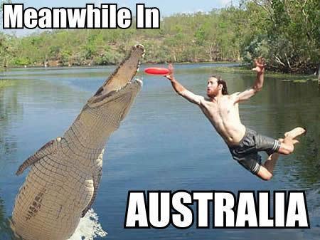 australia-humor-crocodile-man-go-for-frisbee