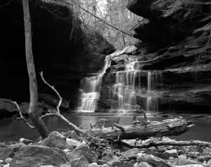 4-5-1992 Sipsey Wilderness Alabama-Linhof Technika 4x5 camera-90mm Schneider Super Angulon lens-Kodak Tmax 100 4x5 film-Kodak Tmax developer.