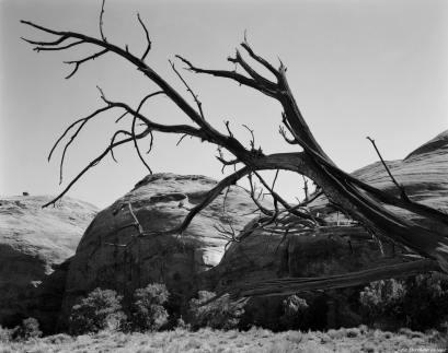 10-3-1993 Mistery Valley Arizona-Linhof Technika V 4x5 camera-120mm Schneider Super Symmar HM lens-K2 filter-Kodak Tmax 100 4x5 film-PMK Pyro developer. See Translation
