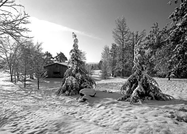 2-13-2014 Peacetree Farm-Lookout Mountain-Pentax 6x7 camera-45mm lens-Efke R50 120 film-PMK Pyro developer.