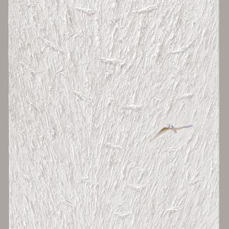 Dance Dream, White Paintings, by John Dowell Artist Photographer