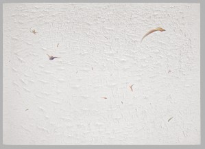 The Inner Space, White Paintings, by John Dowell Artist Photographer