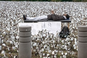 The Healing Table, Cotton, by John Dowell artist photographer