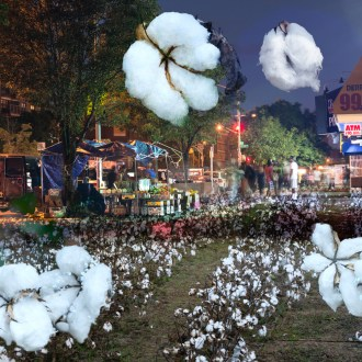 The Market, Cotton, by John Dowell artist photographer