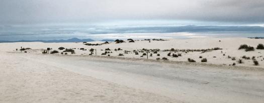 White Sands, circa 2018