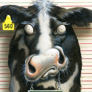 illustration by John Fraser of cow surprised by flashbulb while being photographed for mugshot, mad cow disease, mugshot, arrest, incarceration, funny cow