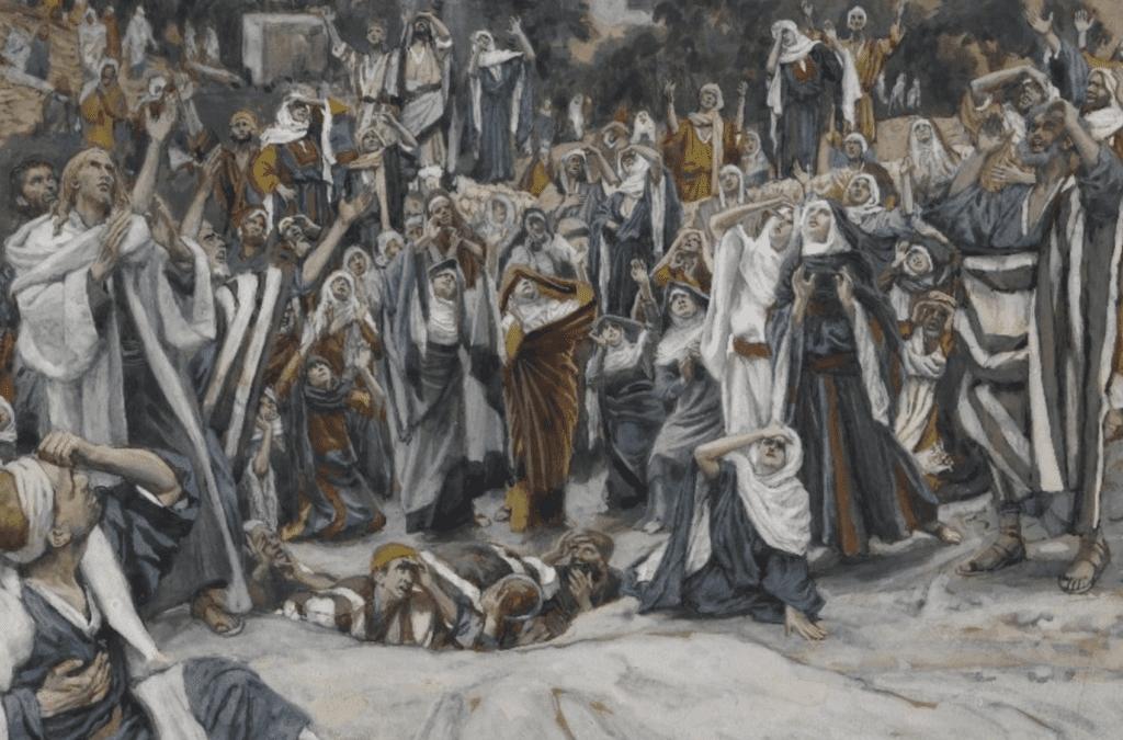 Vincentians Look For Jesus' Footprints