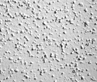 Popcorn Ceiling Removal and Repair - John Grey Painting