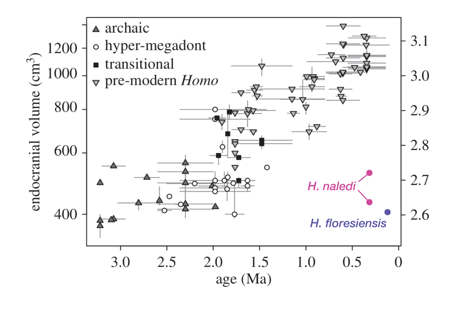 Same figure as above with hominin endocranial volume data, but this time with Homo naledi and Homo floresiensis added