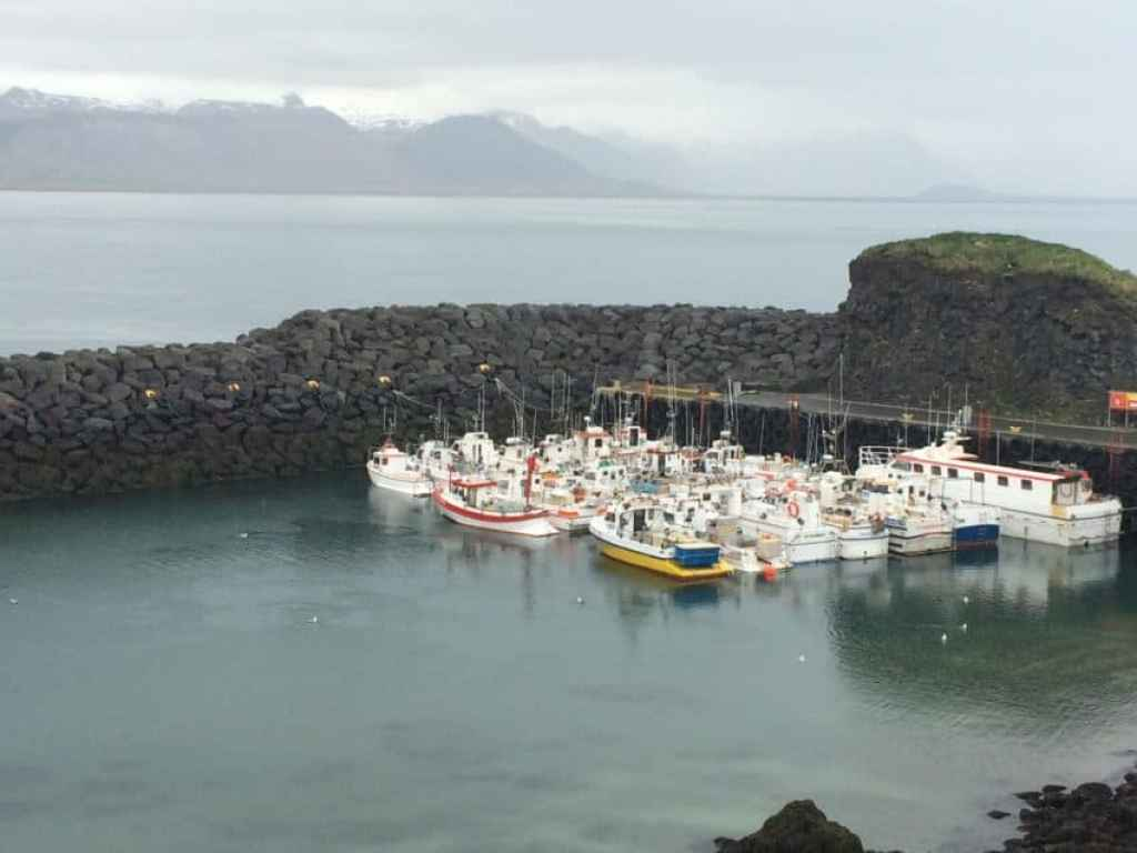 The quaint harbor in the West Iceland town of Rif (pop. 160).