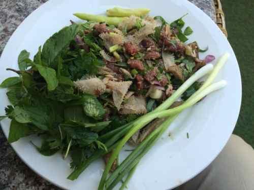 Buffalo salad in Vientiane, Laos.