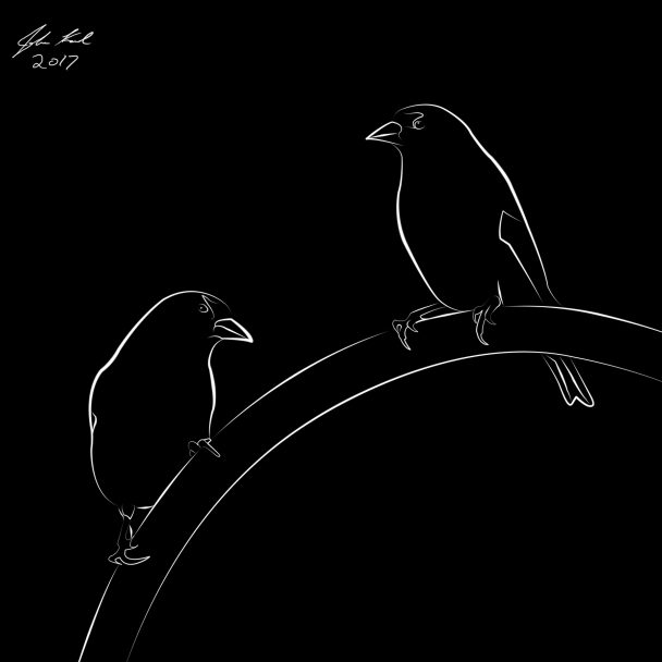 Line Drawing of Gold Finches