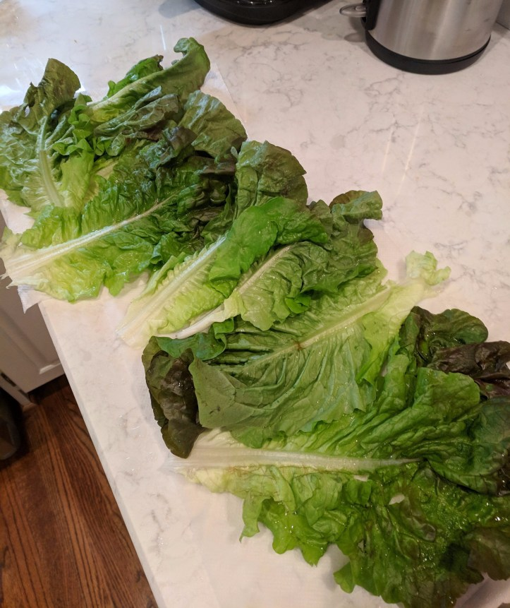 lettuce for the wraps red lettuce