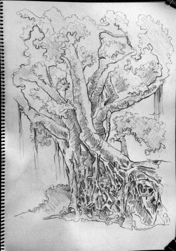 05-16-11-banyan-tree-stanley