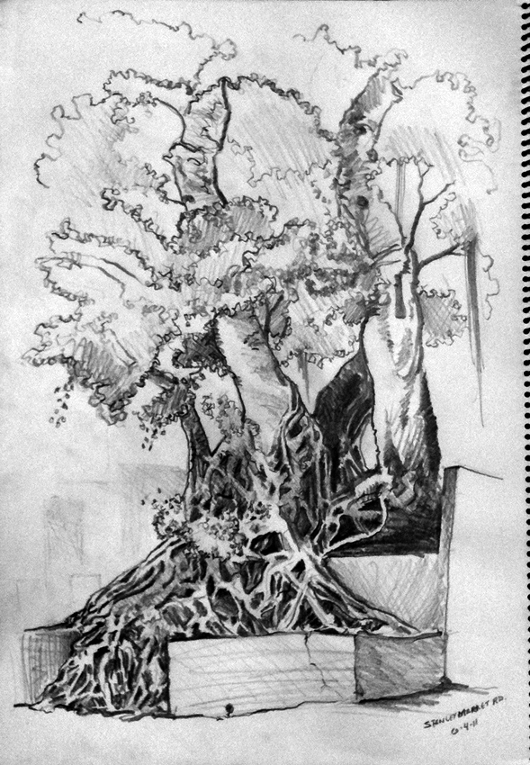 06-04-11-banyan-tree-stanley