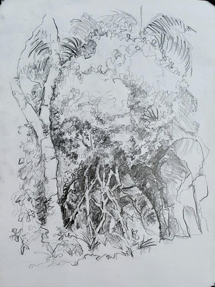 adventureland-trees-03-04-16.jpeg