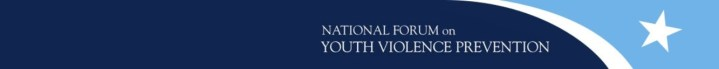 Interim Results from the Implementation Assessment of the National Forum on Youth Violence Prevention