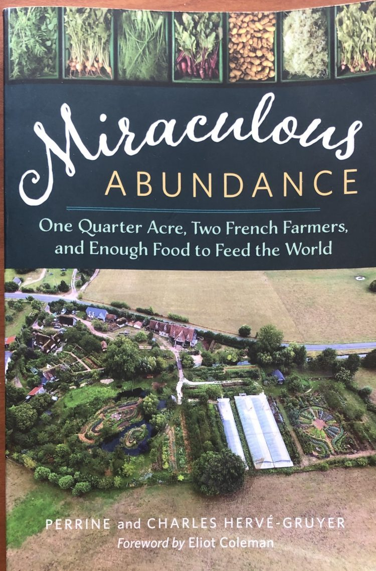 Miraculous Abundance Book Cover