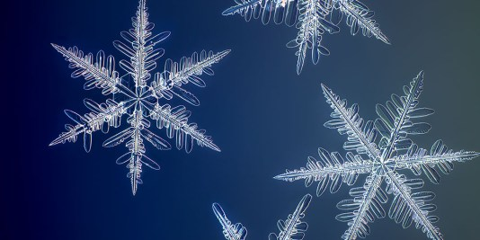 Yellowknife Flurry snowflake photography Nathan myrhvold