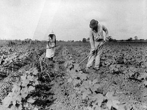 Alabama Sharecroppers