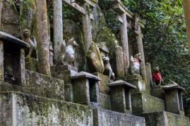 Fushimi Inari - fox guardians (IMG_7948)