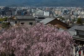 Looking back at Kyoto