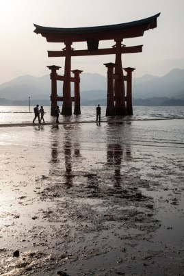Floating Torii at low tide - pic 2