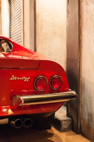 Dino Ferrari - pic 2