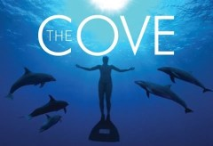 THE COVE – Stop Killing the dolphins, what harm do they do to you? The Full Documentary (2009) (youtu.be)