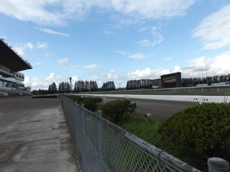 horseracetrack.jpg