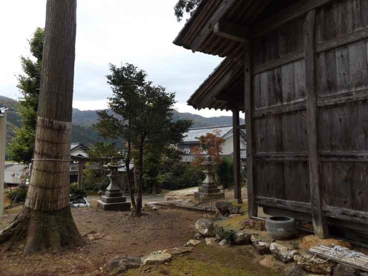yashirodani photo